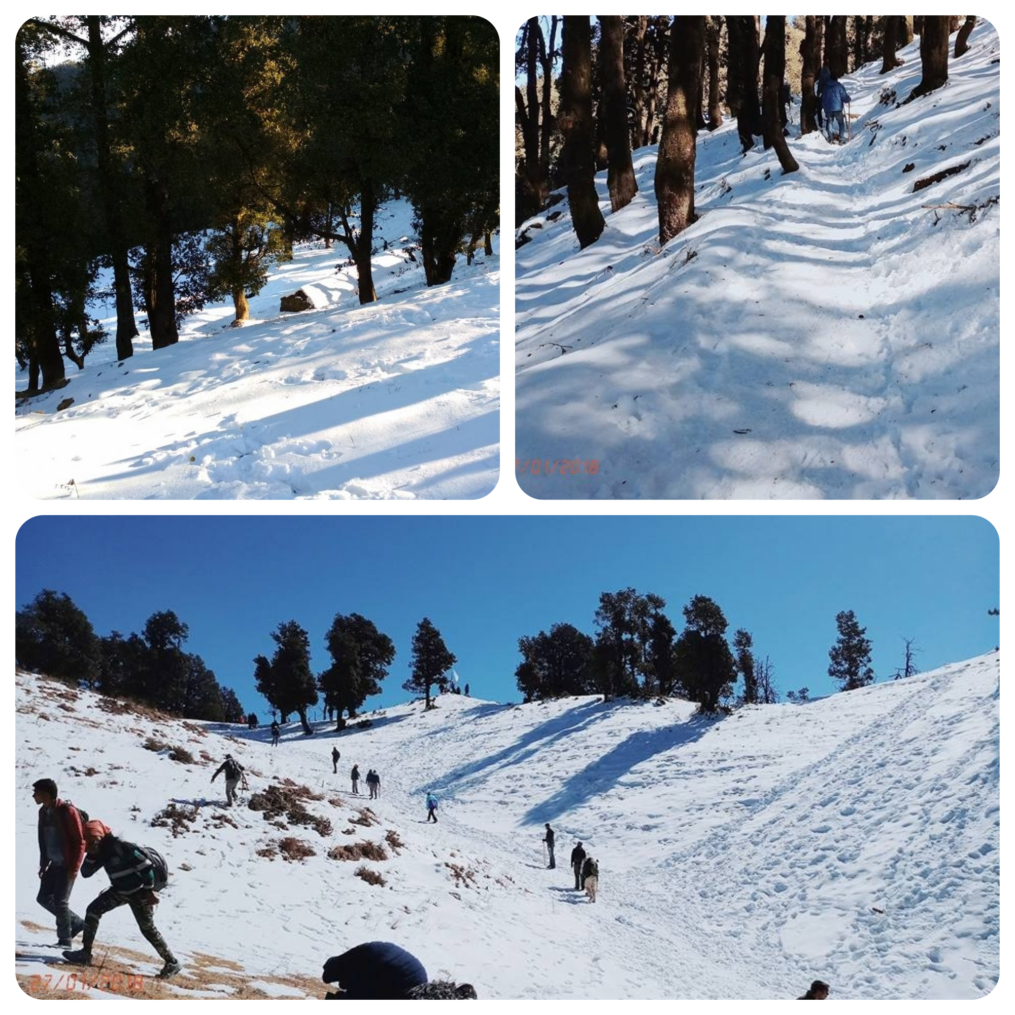 Nag Tibba easy winter trek