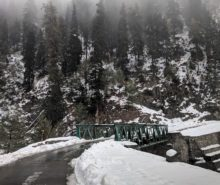 Gulmarg christmas vacation